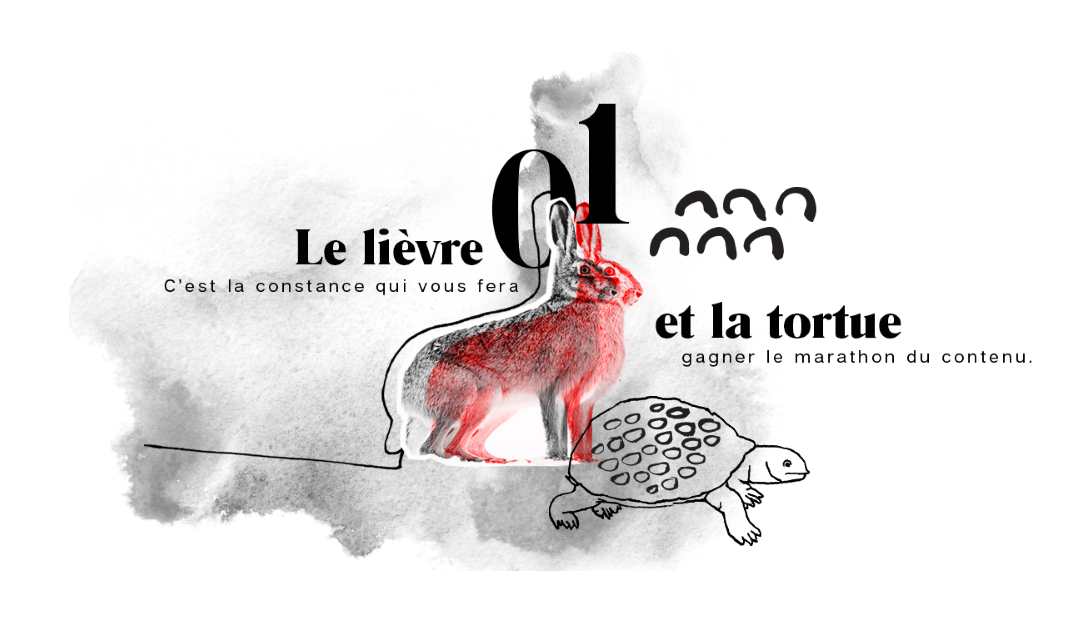 Le lièvre et la tortue: la constance en marketing de contenu