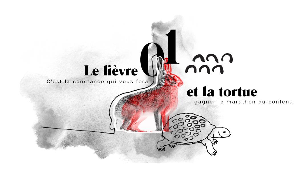 Le lièvre et la tortue: la constance en marketing de contenu